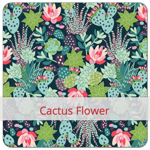 cactus copie