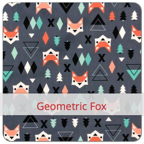 Motov_Geometric_Fox